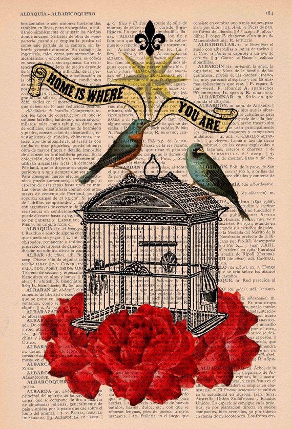 90e9d041a9e47ea5fdda509b1ddbbdff--bird-of-paradise-bird-cages